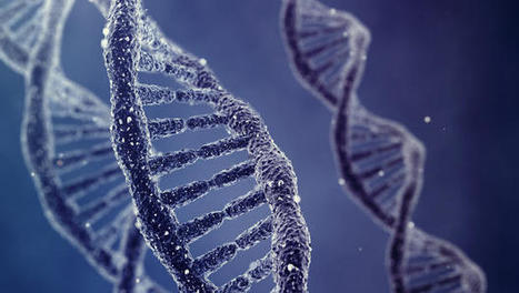 A New Programming Language That Can Shape Our DNA | Information | Scoop.it