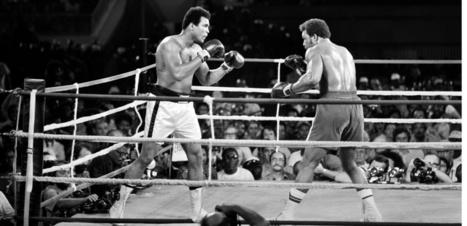 Mohamed Ali : quel lien entre la boxe et la maladie de Parkinson ?   Neurosciences   Scoop.it