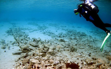 Ancient underwater city of Pavlopetri at risk   News in Conservation   Scoop.it