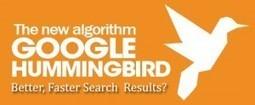 Google Hummingbird - Google Announced New Algorithm Update | ClickCabin | click cabin | Scoop.it