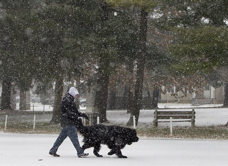 Check snowfall totals across Pennsylvania: map - Penn Live | Lehigh Valley News and Information from Snyder & Wiles, PC | Scoop.it