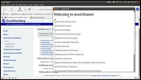 Nettoyer Firefox avec MozCleaner | Le Top des Applications Web et Logiciels Gratuits | Scoop.it