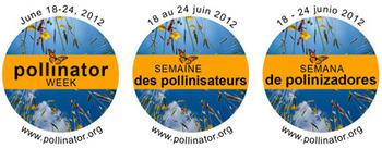 Pollinator Partnership | Annie Haven | Haven Brand | Scoop.it