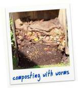 Ten reasons to have a worm farm; Worms from Earthly Delight - Christchurch, New Zealand   9 Environmental Science   Scoop.it
