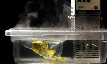 Is Sous-Vide Cooking Destined For Your Home? | Care2 Healthy ... | hospitality | Scoop.it