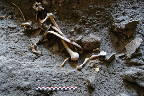 Skeletons, coins found in dig of ancient Pompeii shop | All about water, the oceans, environmental issues | Scoop.it