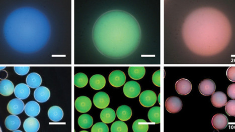 Scientists Discover the Key to Making Paint That Never Fades | Art's Fingers | Scoop.it