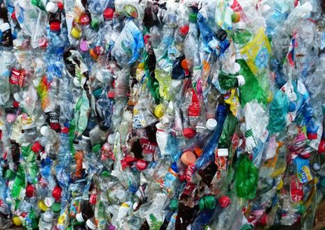 Adieu pollution au plastique ? Une bactérie qui le dévore vient d'être découverte au Japon | Ca m'interpelle... | Scoop.it