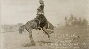 What the 100-year-old Calgary Stampede means to Canada   Calgary Stampede Through the Years   Scoop.it