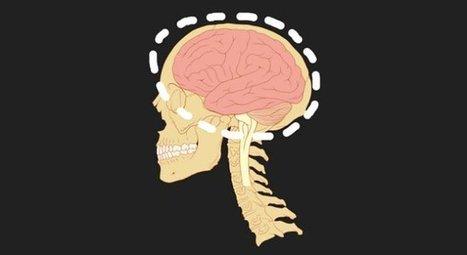 Criptomnesia, cuando tu cerebro plagia a otros o a ti mismo sin darse cuenta | Neurociencia y psicología | Scoop.it