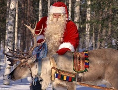 Santa's reindeer's cousins in growing trouble across Canada, new report finds   Cheap Products 4 You   Scoop.it