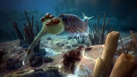 Clic France / Le Musée d'histoire naturelle de Londres propose un voyage immersif au centre de l'océan | Clic France | Scoop.it