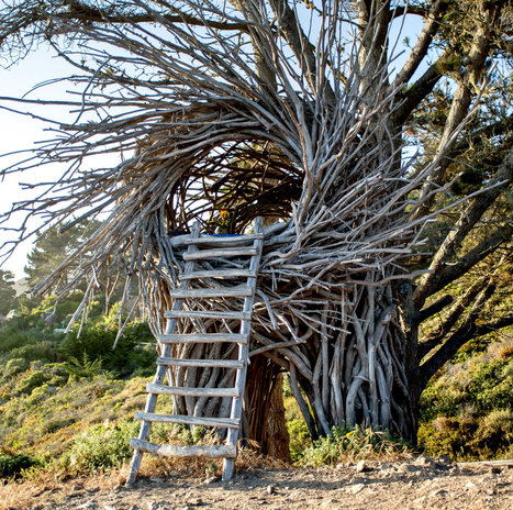 Twigitecture: Building Human Nests | ReConnecting to Nature | Scoop.it