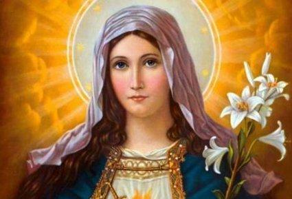 Hoje a Igreja celebra a Festa de Nossa Senhora Rainha   Bíblia Católica Online   Scoop.it