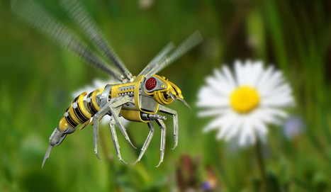 3 Ways Drones of the Future Will Be Like Insects   Vous avez dit Innovation ?   Scoop.it