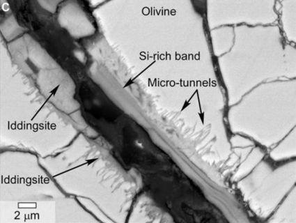 Des traces biologiques sur une météorite martienne ? | Sciences | Scoop.it