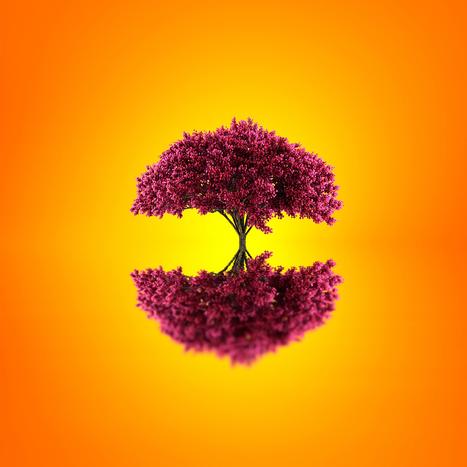 Advaita Evolution by Josep Sumalla | Music, Videos, Colours, Natural Health | Scoop.it