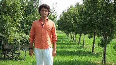 Agricoltura civica e sociale: un progetto su Eppela per sostenerla [VIDEO] | Gli alberi nei giardini | Scoop.it