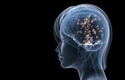 Neuromarketing | Comunicació | Scoop.it