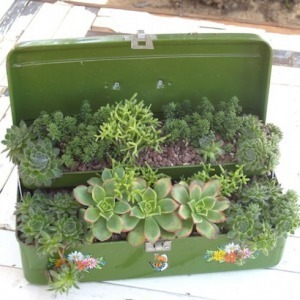 Repurposed Planters | Eco-friendly roofs:  green, white, and garden | Scoop.it