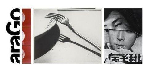 AraGo, mise en ligne d'un nouveau musée national de la photographie   Culture & Numérique   Scoop.it
