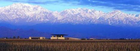 The Most Expensive Wines in Argentina | Le Vin en Grand - Vivez en Grand ! www.vinengrand.com | Scoop.it