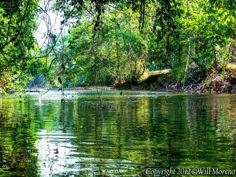 Lazy Days by the River in Belize | Belize in Photos and Videos | Scoop.it