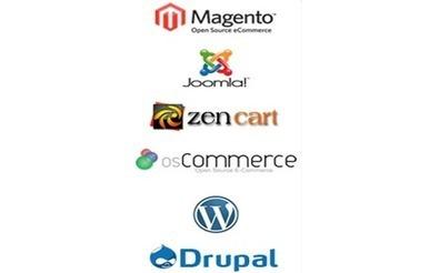 Open Source Website Development, Wordpress, Magento, Joomla, Drupal   Custom Website Development   Scoop.it