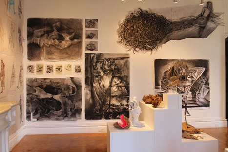 Woods-Gerry   Galleries + Exhibitions   About   RISD   What Surrounds You   Scoop.it