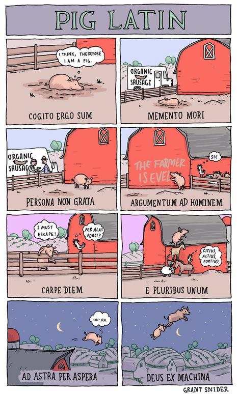 Quand un cochon illustre des proverbes en latin... | réseaux sociaux et pédagogie | Scoop.it