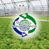 Aquaponics~Aquaculture~Fish~Food