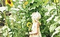 Gardening for children: Sunflower alley - Telegraph | 100 Acre Wood | Scoop.it