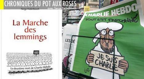 Enquête sur les attentats Charlie Hebdo: la manipulation du siècle | FALL OF THE REPUBLIC - la chute de la Republique | Scoop.it