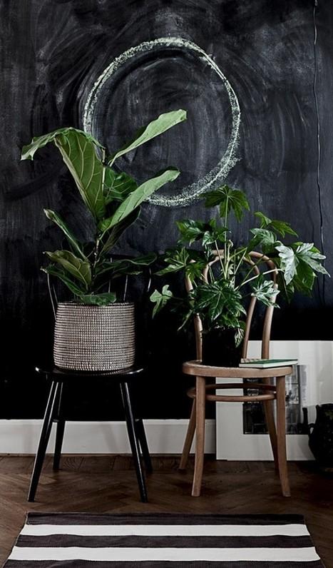 Focus   Comment décorer avec des plantes d'intérieur ?   décoration & déco   Scoop.it