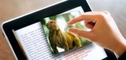 Le livre numérique apporte-t-il un réel enrichissement par rapport au livre papier ? - MASTER degree in graphic design | Design | Scoop.it