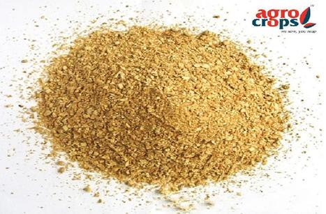 Indian Oilseed Meal, Oilseed Meal Exporters in India | Agrocrops | Scoop.it