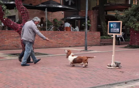 Hush Puppies: GPS Hush Puppies | Ads of the World™ | Out of Home | Scoop.it