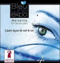 Marseille Bleu Wine Expo 2013, salon professionnel des vignerons vndépendants Provence et Sud Vallée du Rhône | DaVinaVino's World | Scoop.it