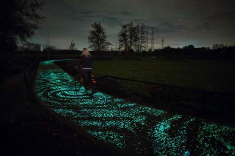 Obra de Van Gogh inspira ciclovia que brilha no escuro | Criatividade, inovação, marketing | Scoop.it