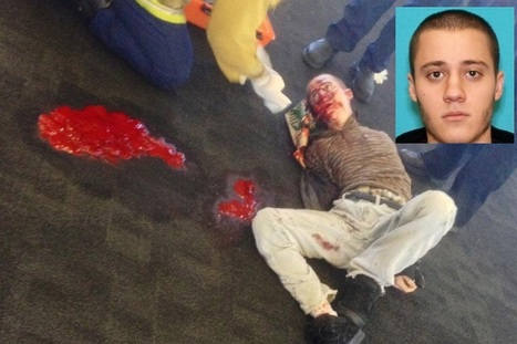 Does this look like a shooter in BLUE at LAX? | Criminal Justice in America | Scoop.it