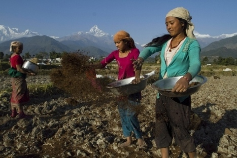 Himalayan nations take action in response to changing climate and its deadly effects   Tibetan Spiritual Jewelry   Scoop.it