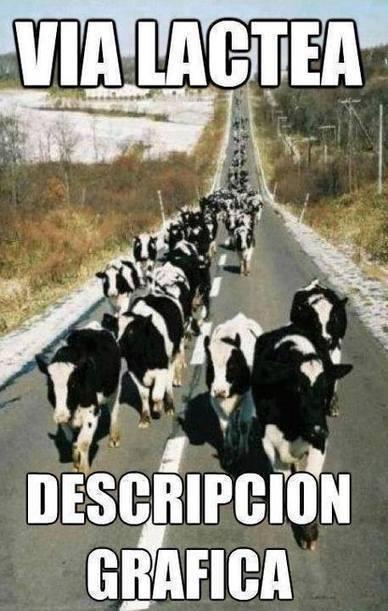 Vía Láctea, definición gráfica | Humor racional | Scoop.it