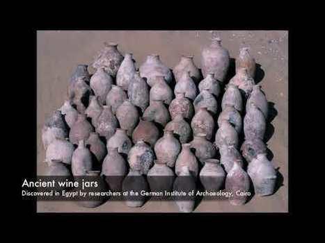L'archeologo e l'uva - vite e vino dal Neolitico alla Grecia arcaica di Patrick E. McGovern | Evoluzione Culturale | Italica | Scoop.it