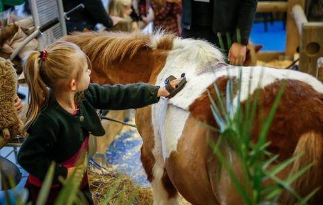 A Paris, 2 300 chevaux au salon du 26 novembre au 4 décembre | Cheval | Scoop.it