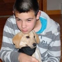 Seeking a way to monitor son's diabetes, family goes to the dogs ...   Gentle Dog Training and Care   Scoop.it
