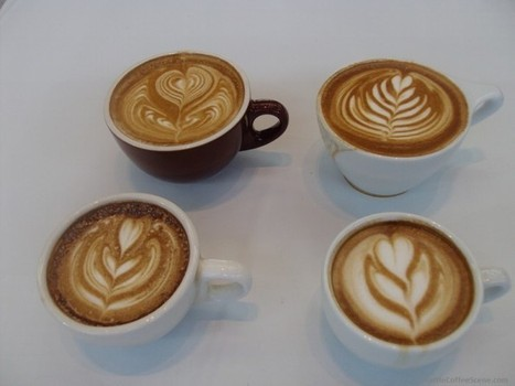 How to Be a Latte Art Champion – Exclusive Interviews with a Latte Art Judge, Champions | Seattle Coffee Scene | Coffee | Scoop.it