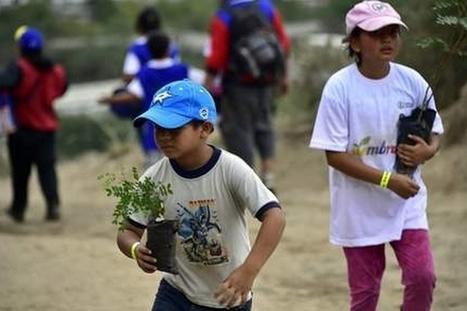 Un nouveau record de reforestation établi en Équateur | Efficycle | Scoop.it
