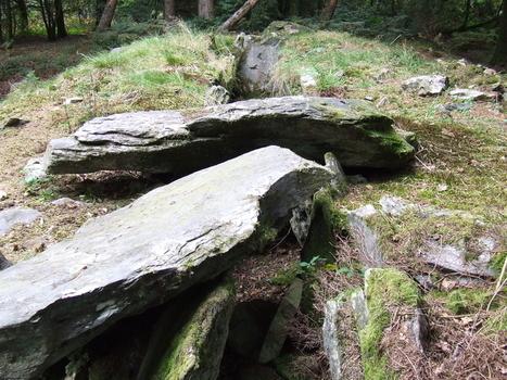L'Allée couverte de Corn-er-houët (hoët), à Caurel (22) - Camille et la Bretagne de nos Ancêtres | Mégalithismes | Scoop.it