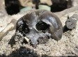 Hundreds Of Ancient Warriors' Remains Found In Bog | The Global Village | Scoop.it