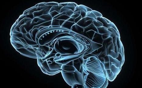 Ces puces électroniques qui imiteront le cerveau | High Tech Infos | Scoop.it
